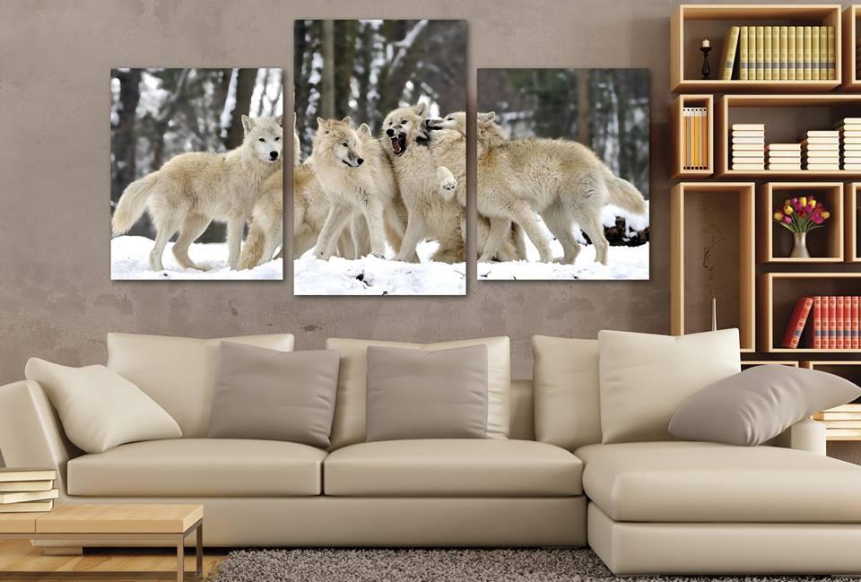 Πορτρέτα από λύκους